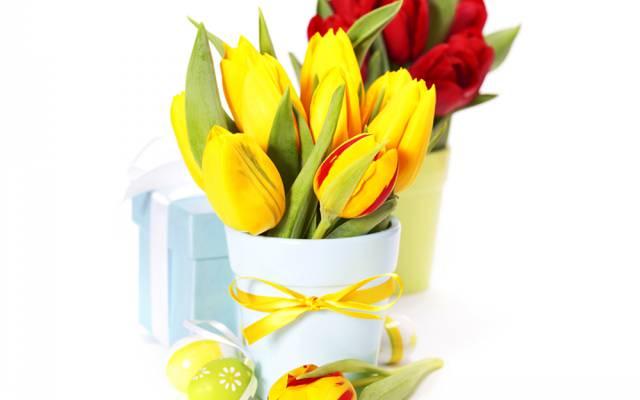 鞠躬,礼品,复活节,鸡蛋,花瓶,郁金香,照片,鲜花,花束