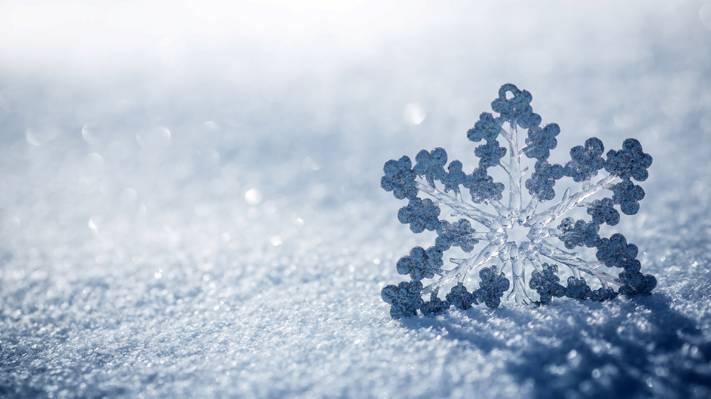 冬天的雪花