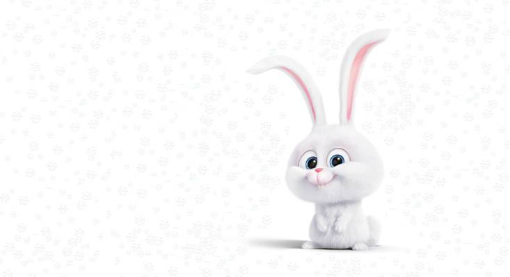壁纸渲染,雪花,假期,雪,艺术,儿童的,诺维年,心情,小兔子