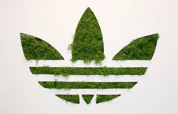 背景,徽标,草,阿迪达斯,阿迪达斯,原件