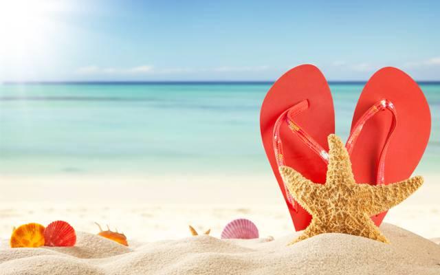 夏天,太阳,石板,海星,夏天,假期,沙子,海,沙子,壳,海滩,贝壳,海滩,假期