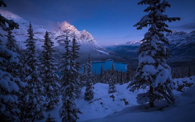 加拿大,艾伯特,湖,班夫国家公园,艾伯塔省,全景,雪,落基山脉,加拿大洛矶山,沛托湖,...