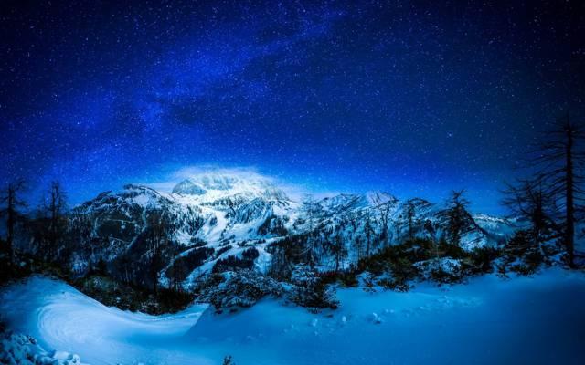 森林,天空,夜晚,山,树,山,冬天,星星,雪
