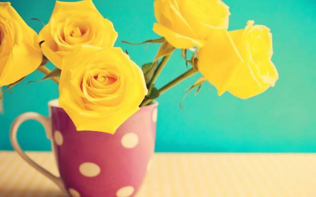 复古,鲜花,马克杯,表,鲜花,玫瑰,玫瑰,复古