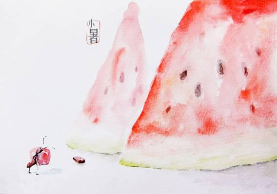 二十四节气小暑手绘插画