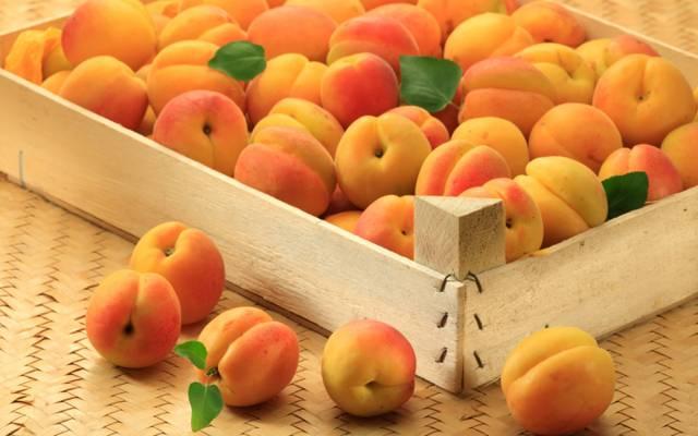 杏,杏,水果