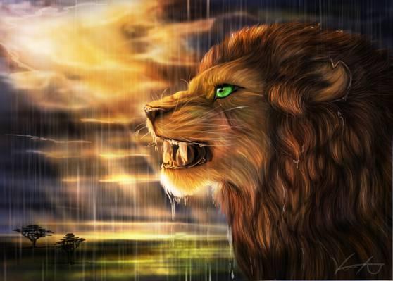 捕食者,金凤凰100,艺术,萨凡纳,轮廓,雨,太阳,狮子座,野猫
