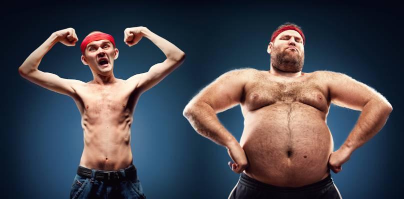 脂肪,形态结构,姿势,骨感