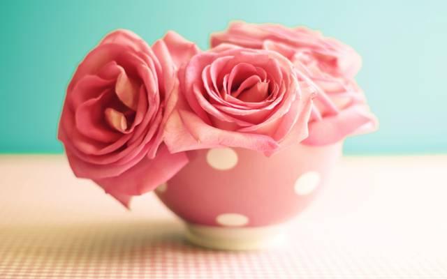 复古,鲜花,杯,表,鲜花,玫瑰,粉红色,玫瑰,复古