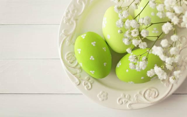 复活节,复活节,鲜花,彩绘鸡蛋,快乐,春天,鸡蛋,鲜花