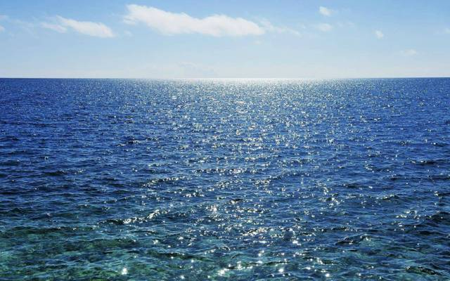 溫柔的藍色潮汐