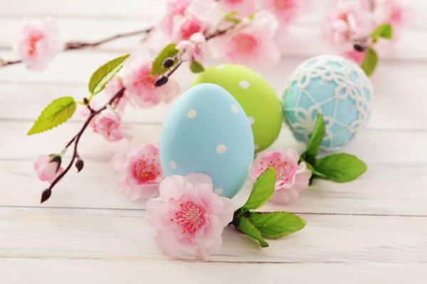 鲜花,分支机构,度假,复活节,鸡蛋,复活节,复活节,开花,蓝色,粉红色,绿色,春天