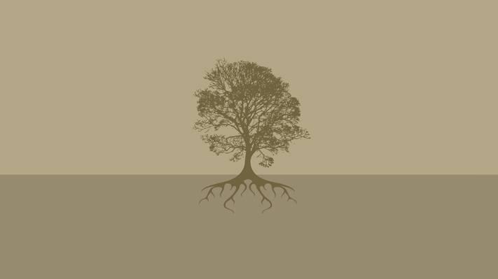 背景,根,地球,树