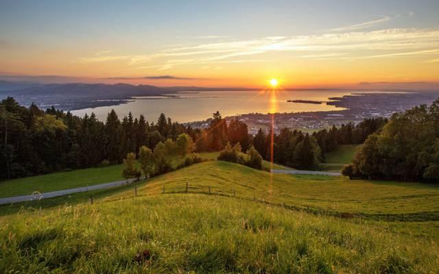 阳光,绿地,路,天空,草地,风景