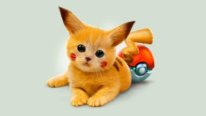 艺术,皮卡丘,小猫,红色,眼睛,宠物小精灵