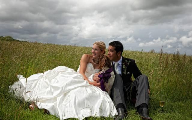 狗,二,婚礼,玻璃,心情,场,安娜·马塞洛,幸福