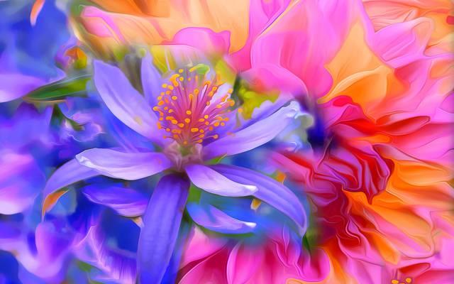 触摸,油漆,花瓣,花园,花坛,线,花