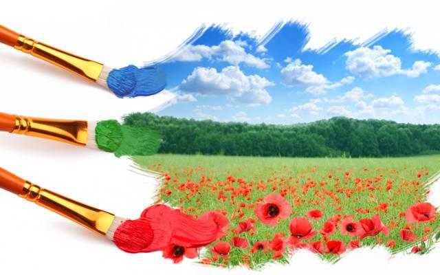 鲜花,画笔,油漆,领域,Mac,天空,草,云