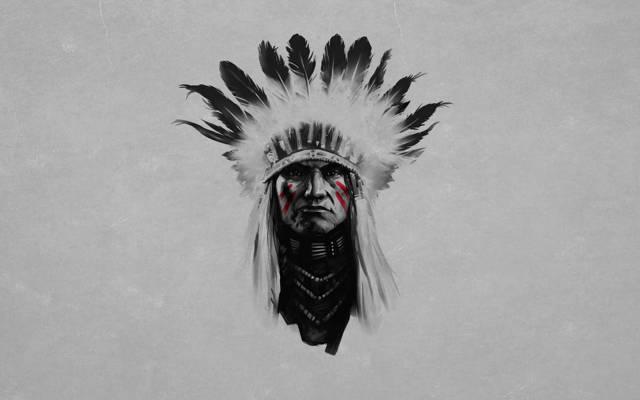 羽毛,黑色和白色,绘画,红色,条纹红色,领导,印度,严重