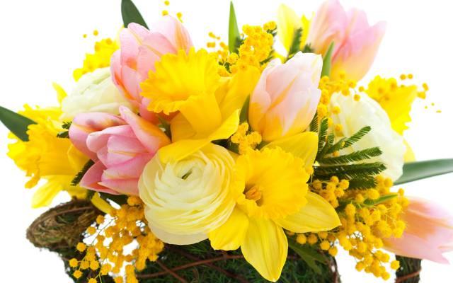 鲜花,美容,黄色,郁金香,叶子,粉红色,花瓣,花束,黄色,明亮,含羞草,郁金香,含羞草,水仙,...