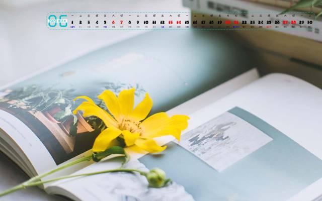 2020年6月小清新唯美花卉桌面日历壁纸