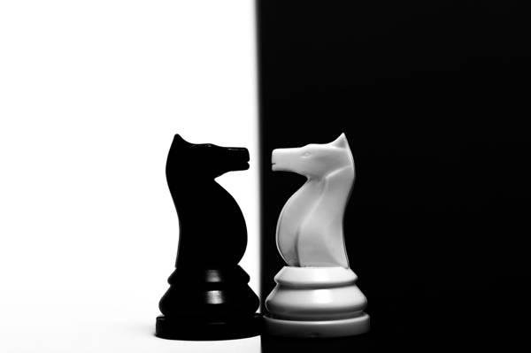 图,对比,马,国际象棋
