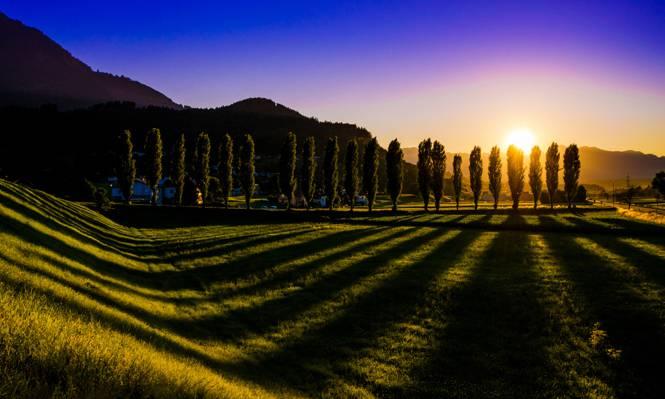 奥地利,树,阴影,Nenzing,菲拉赫,奥地利,草坪,太阳,天空,草,景观,日落