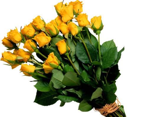 鲜花,黄色,花束,黄色,玫瑰,花