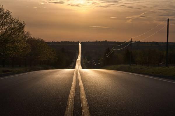 道路,夜晚,景观