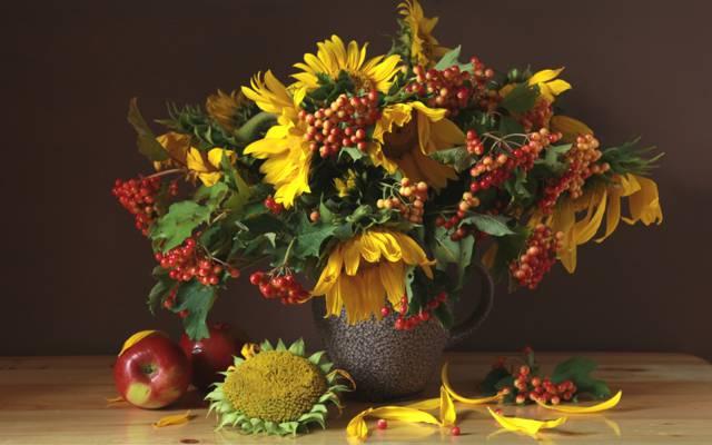 向日葵,苹果,静物,八月,卡利纳,花束