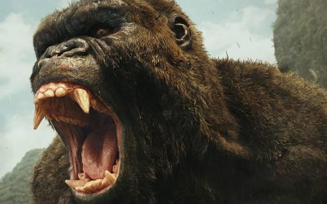 电影,电影,金刚:Kong:骷髅岛,电影,大猩猩,强壮,骷髅岛