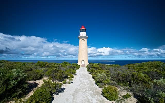 海洋,灌木丛,海岸,灯塔,袋鼠岛,澳大利亚,灯塔,云,澳大利亚