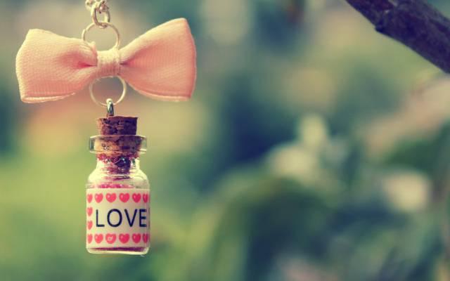 分支,瓶,链,心,弓,爱,粉红色