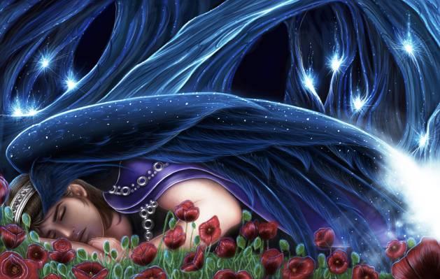 红色的花朵,外套,森林,能源,睡觉