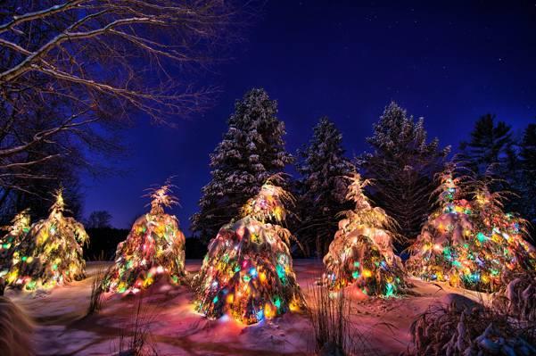 壁纸花环,新年,夜晚,雪,树,冬季,天空