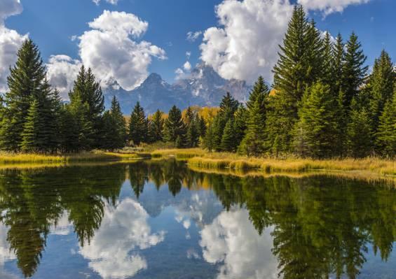 反射,山,大提顿树,大提顿国家公园,水,云,太阳,天空,...