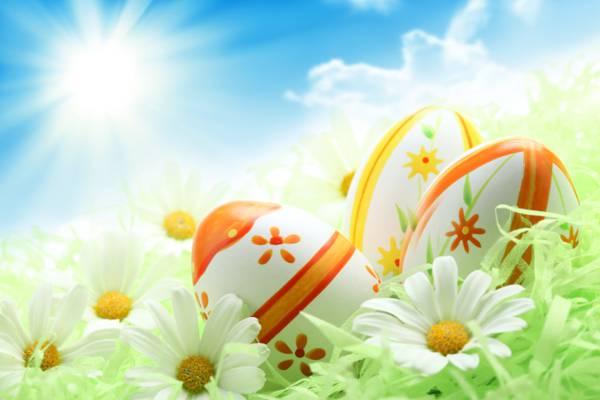 假日,复活节,鸡蛋,洋甘菊,绿党,蓝色,太阳,天空