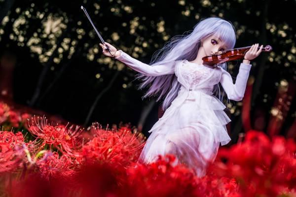 鲜花,女孩,小提琴,娃娃,头发
