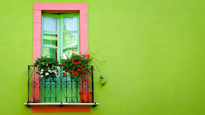 花,门,绿色,阳台,墙壁