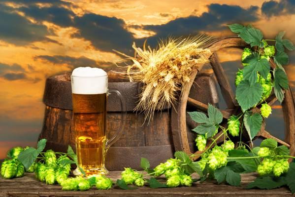 壁纸风景,桶,背景,车轮,玻璃,啤酒花,泡沫,云,天空,耳朵,啤酒,日落