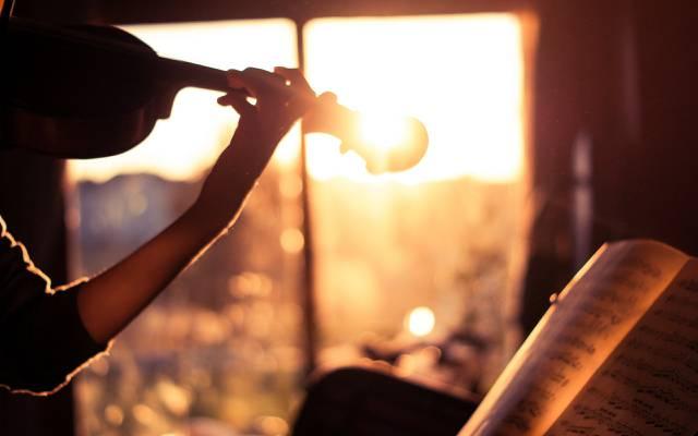 轻,心情,笔记,小提琴,生活是美丽的,musiwa