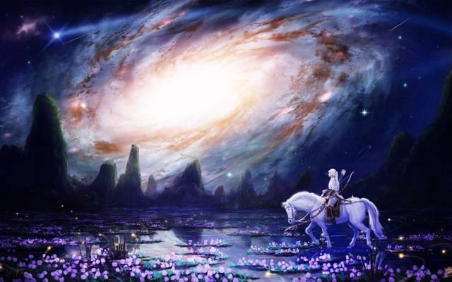 武器,鲜花,艺术,性质,箭头,动漫,makkou4,女孩,晚上,云,马,星星,景观,弓