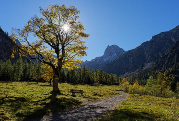 秋天,阿尔卑斯山,奥地利,蒂罗尔,路径,树,树,谷,长凳,山,奥地利,蒂罗尔,Karwendel,Karwendel,阿尔卑斯山