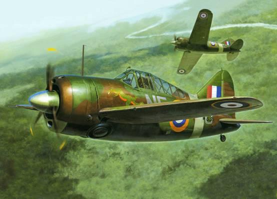 WW2。,艺术,飞机,甲板,战斗机,海军,水牛F2A,布法罗,布鲁斯特,美国