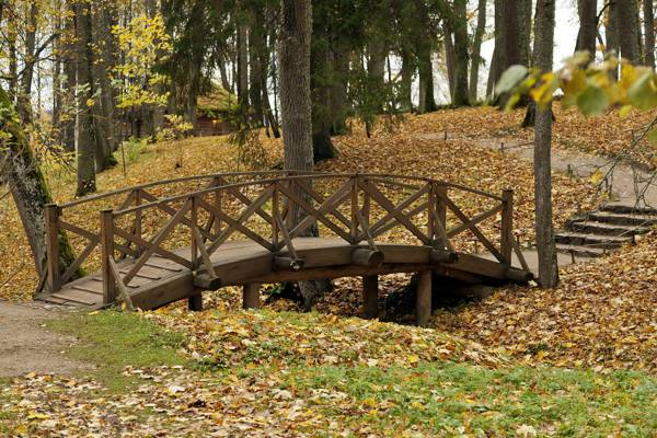 公园,桥,秋天,性质