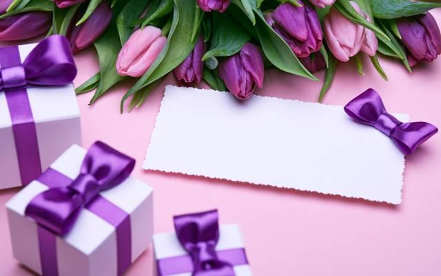 新鲜,爱,弓,浪漫,礼物,郁金香,郁金香,紫色,花束,礼品,鲜花