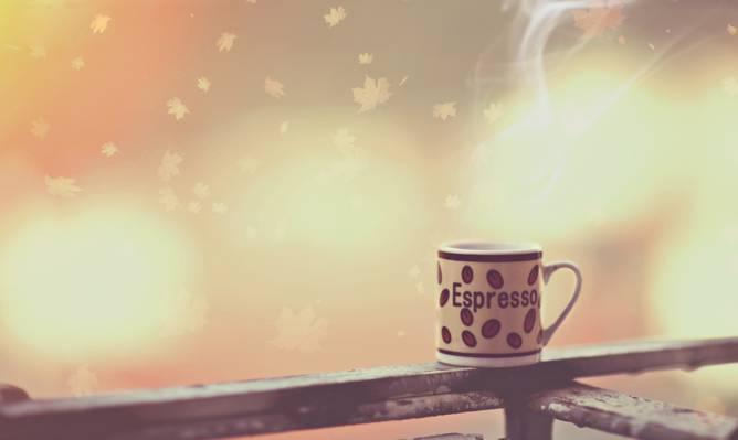 早上,照片,咖啡,摄影师,杯,亚历山德罗迪Cicco,咖啡
