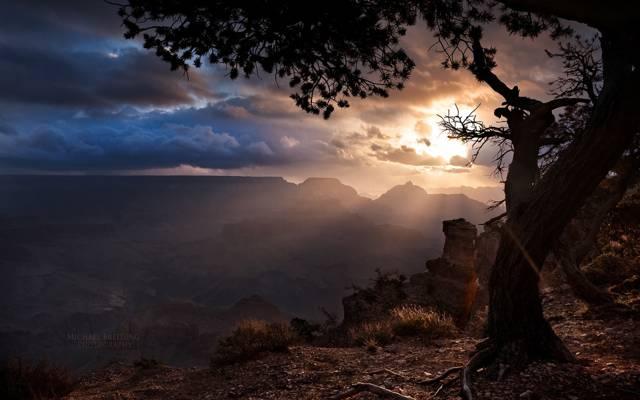 太阳,云,亚利桑那州,树,大峡谷的光线