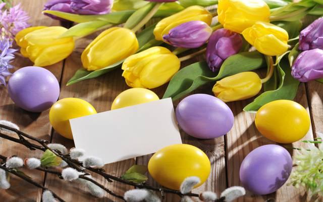 鲜花,鸡蛋,春天,鲜花,郁金香,复活节,鸡蛋,复活节