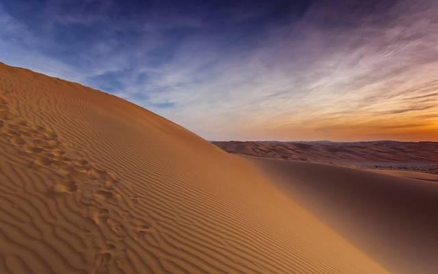 沙丘,沙漠,风景